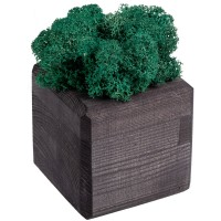 Декоративная композиция GreenBox Black Cube, бирюзовый